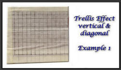 Trellis effect example 1