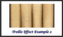 Trellis effect example 2
