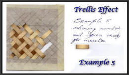 Trellis effect example 5